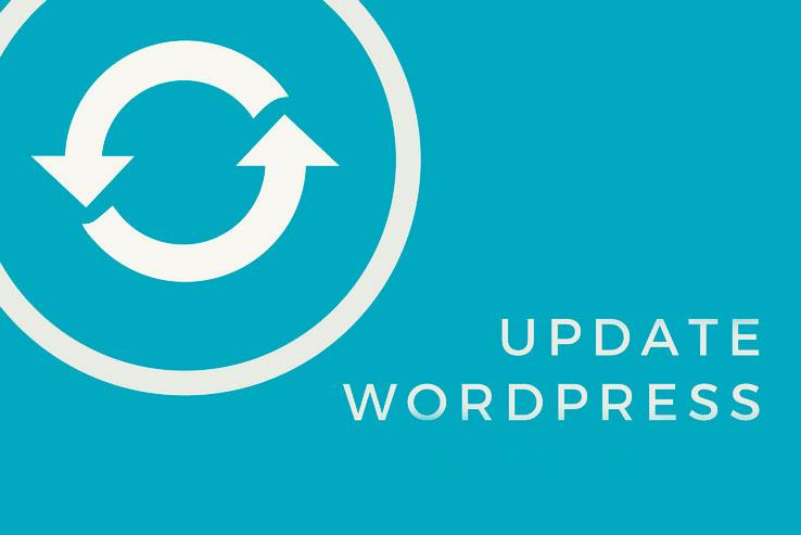 Las Actualizaciones y la Seguridad en WordPress