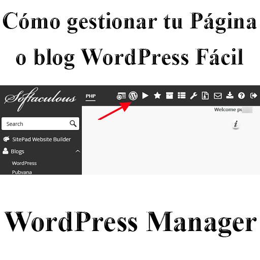 Cómo gestionar tu página o blog WordPress fácil